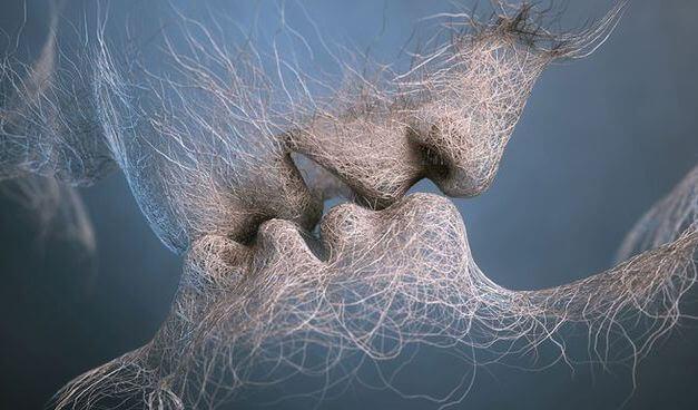 baiser fibre